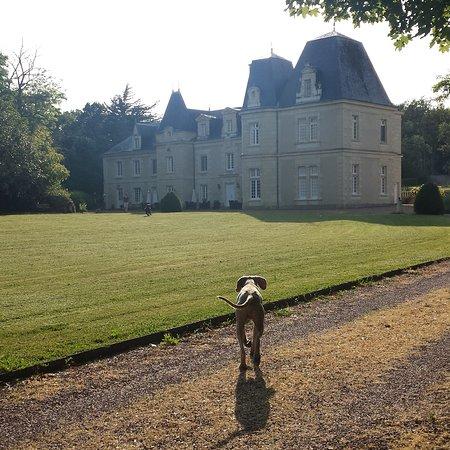 Chateau de Jalnay foto