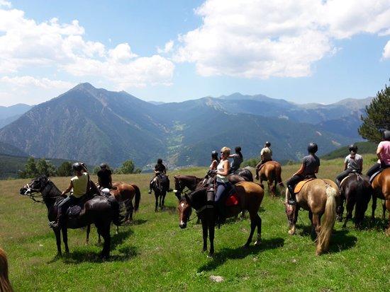 L'Aldosa Horse Center & Trails