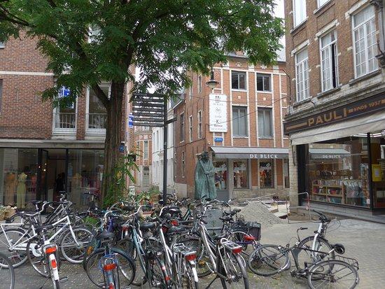 Leuven, Hard times for Erasmus