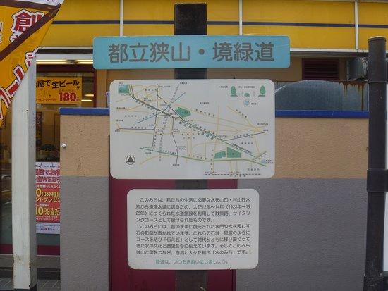 紫陽花を眺めながら散策(小平市)
