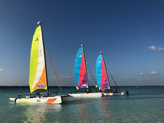 Kokay Sailing