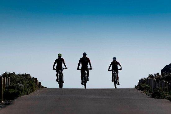 e-bikes Tours - EmpordàLovers