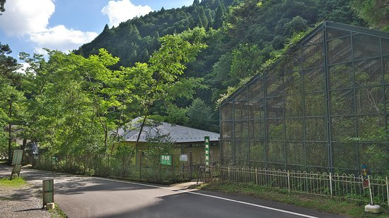 Sayo-cho Konchukan