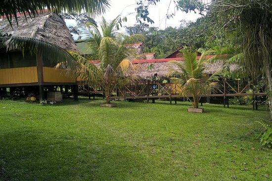 Cabaña Amazon Lodge