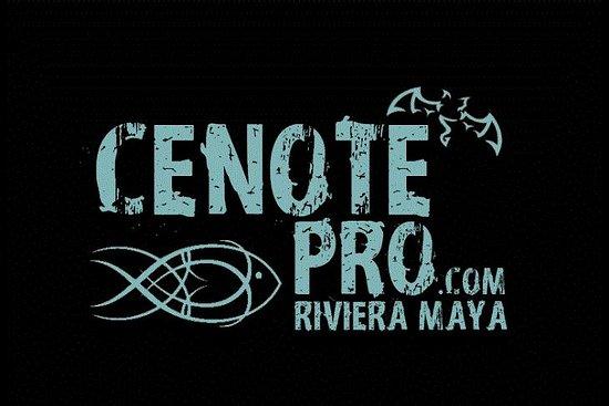 Cenotepro