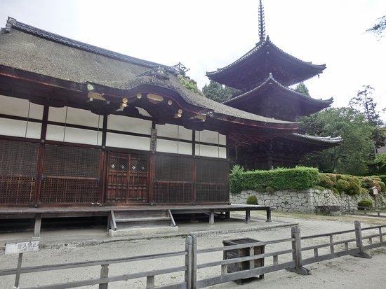 Mii-dera Temple Sanjunoto