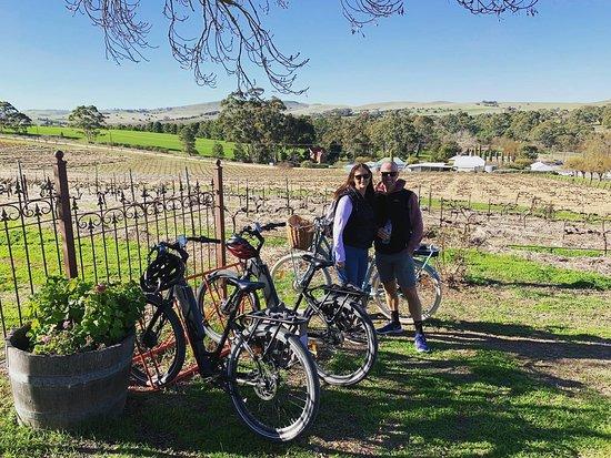 Riesling Trail Bike Hire