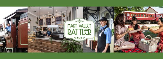 Mary Valley Rattler