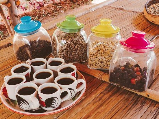 Pati Non Coffee Roaster Factory