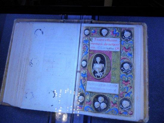 Biblioteca Guarneriana: cool book