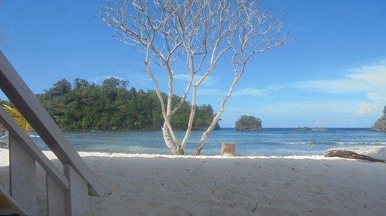 Central Sulawesi照片