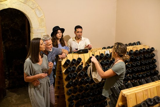 Learn about wine with the wine makers