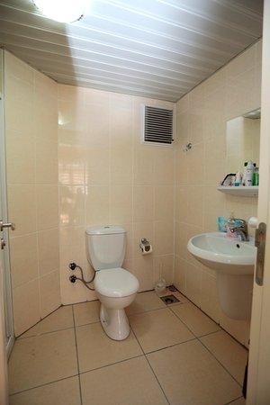 Yalova Province, Turkey: 2 kişilik oda banyo