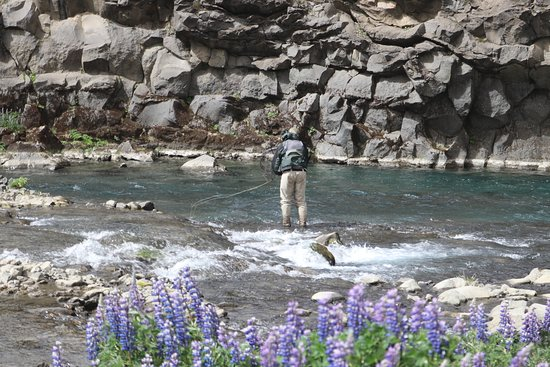 Fishing in beautiful and varied rivers