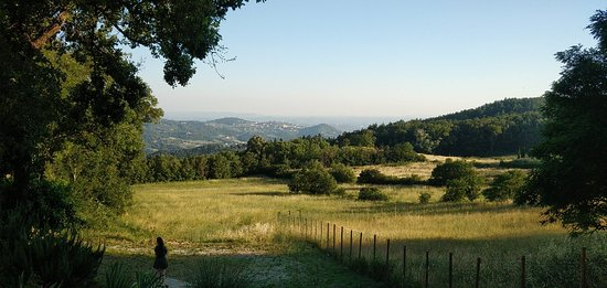 Pratolino, إيطاليا: Demidoff Country Resort
