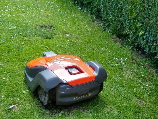 Edinburgh Robot Lawnmower