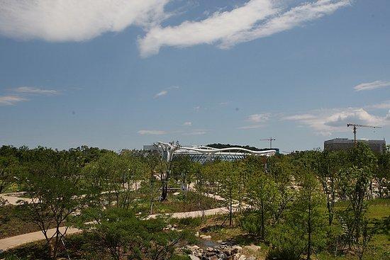 Seoul Botanical Garden照片