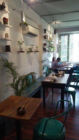 2tree review by khaatipeetidilli