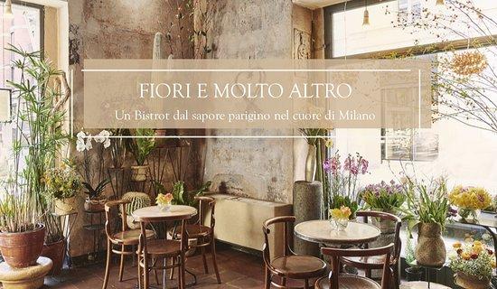 Fiori Bianchi Brera.Fioraio Bianchi Caffe Milan Centro Storico Menu Prices