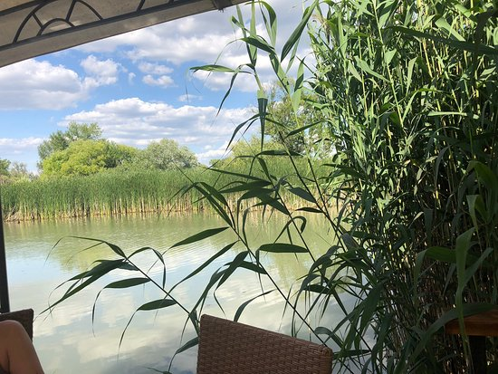 Szigetszentmiklos, Ungarn: Garden Cafe