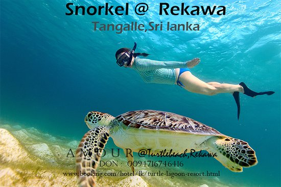 Snorkel. Rekawa just 10 to 15 minutes from Rekawa