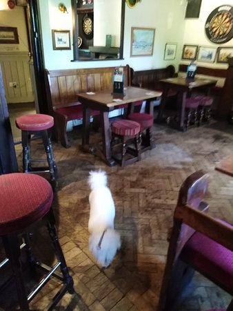 The Old Inn- Mullion: exploring
