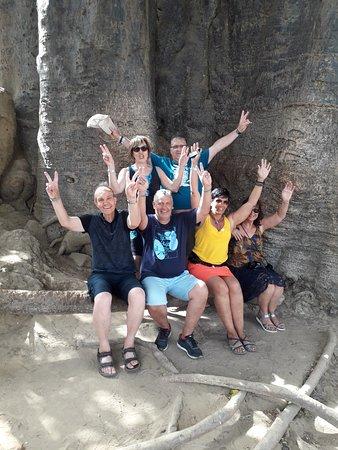 au pied d'un baobab geant
