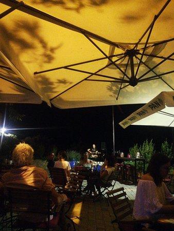Platan Bar