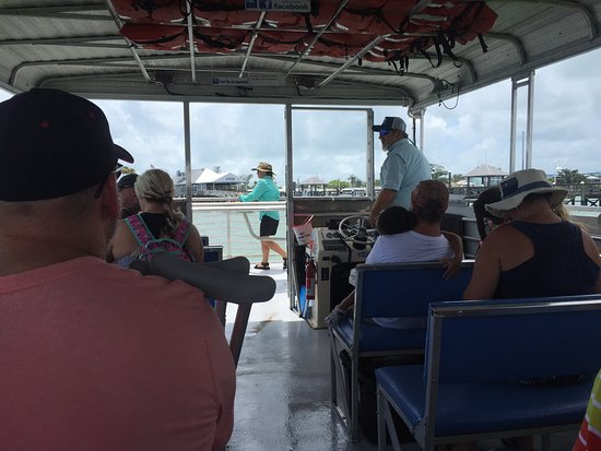 Paradise Boat Tours: From the rear of the boat