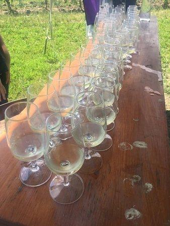 Niagara Falls Tour with Cruise & Lunch in Niagara on the Lake: Wine Tasting!