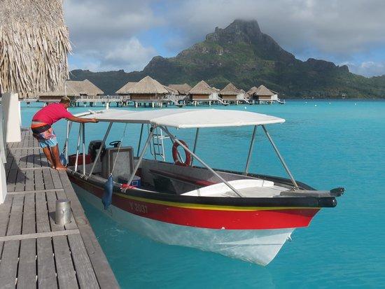 Bora Bora, Polinesia Francesa: Raanui Tours, excellente excursion!