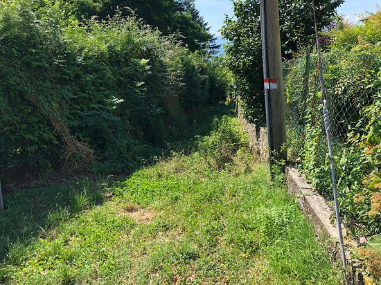 Laveno-Mombello, İtalya: Stradella per la Rocca/ little path to la Rocca