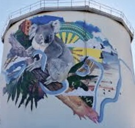 Narrandera, Австралия: A giant koala takes in the view across town...