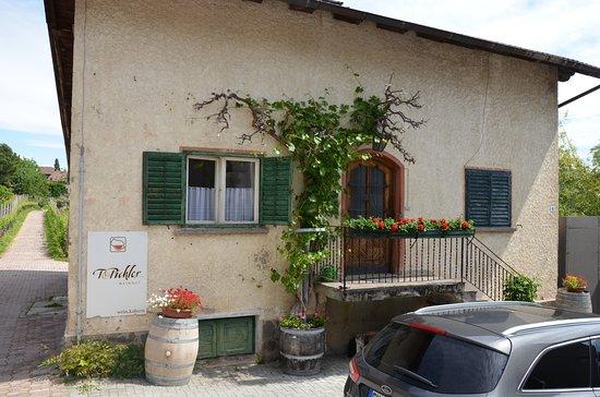 Azienda Vinicola T. Pichler
