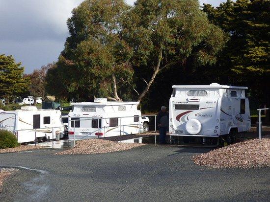 Port Lincoln Tourist Park: Powered Sites