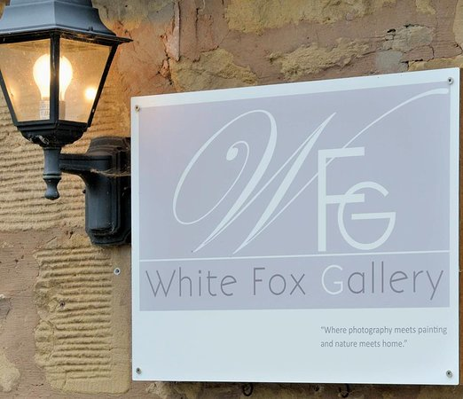 ‪White Fox Gallery‬