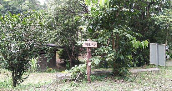 Hueilong Trail