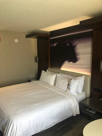Liked the cow above the bed