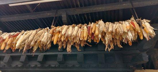 Simply Bhutan Museum: Dried corn