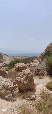 En Gedi Nature Reserve 사진