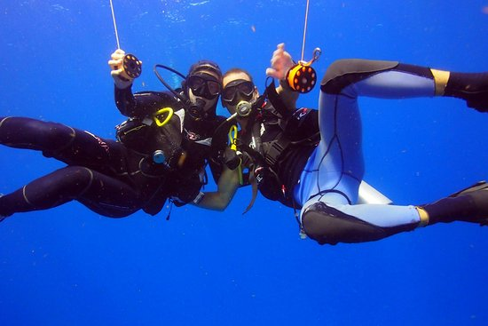 Dive Home
