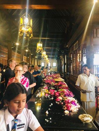 Le guide parfait pour le vrai Sri Lanka