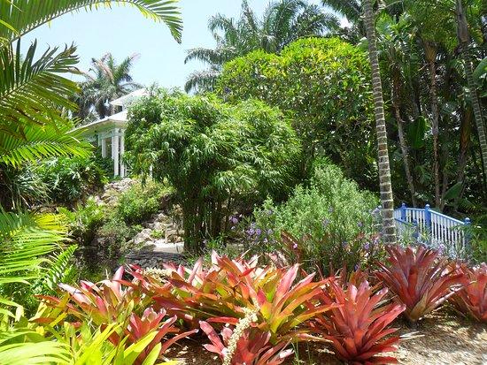สวนพฤกษชาติควีนอลิซาเบธที่ 2