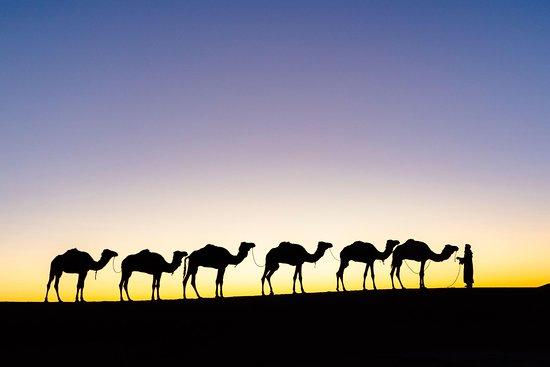 Noble Marhaba Travel