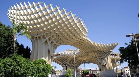Las Setas De Seville