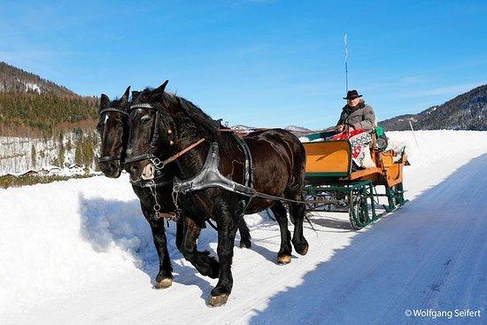Julhästdragen slädtur från Salzburg