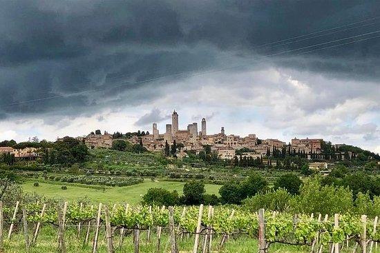 私人旅遊:從佛羅倫薩出發的錫耶納,聖吉米尼亞諾和基安蒂一日遊