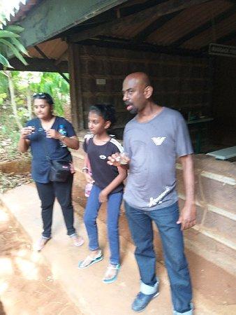 Tours for Sri Lanka: Tours for Sri Lanka