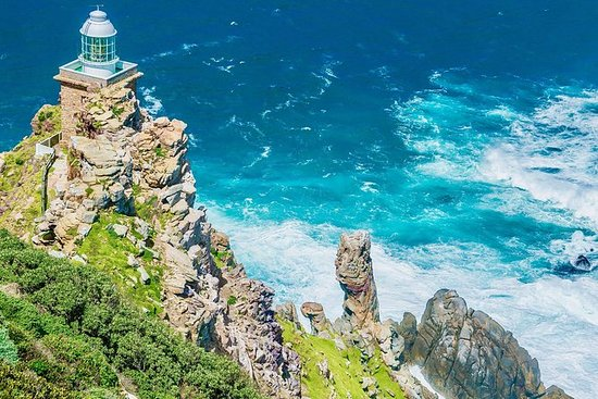 Tour dei pinguini a Cape Point e