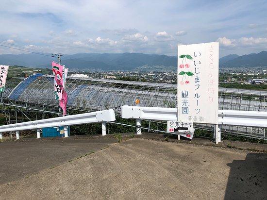 Iijima Fruit Farm